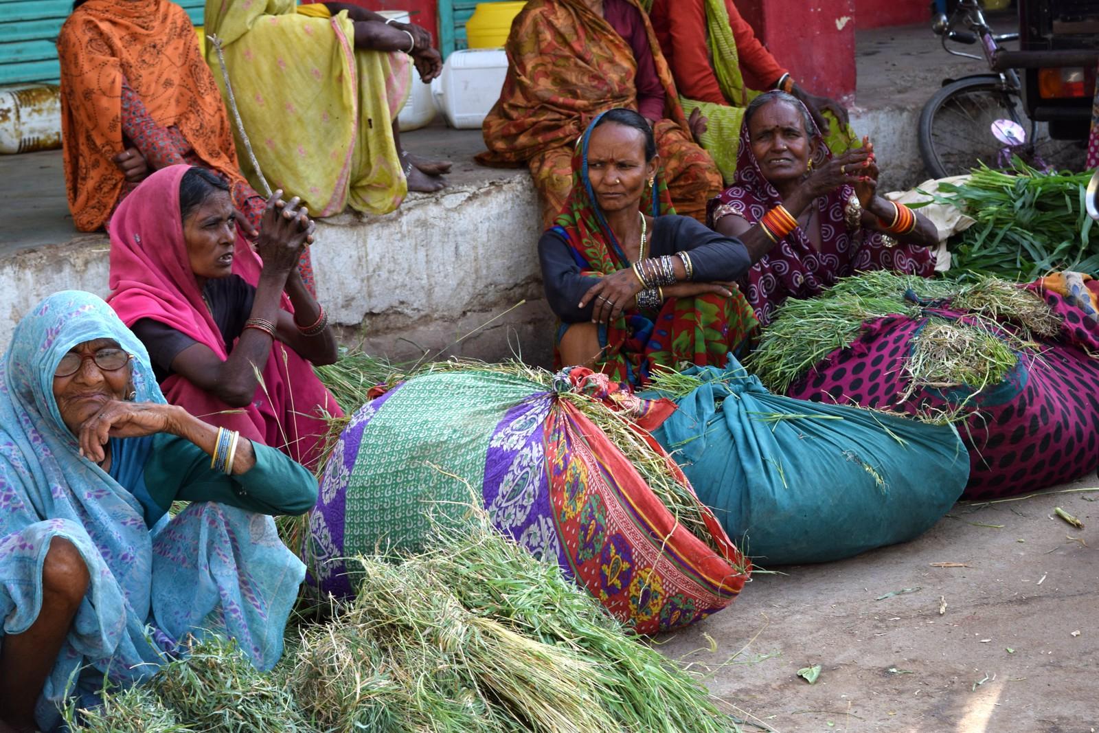 Intian Kastit